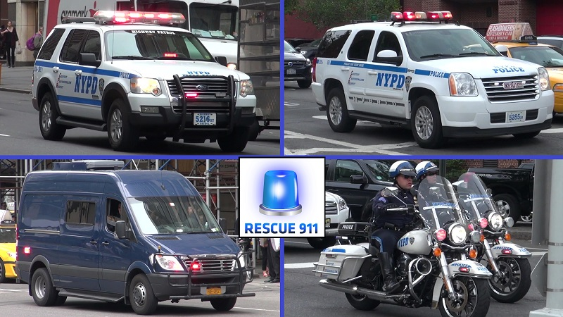 Special Escort NYPD (collection) (stream)