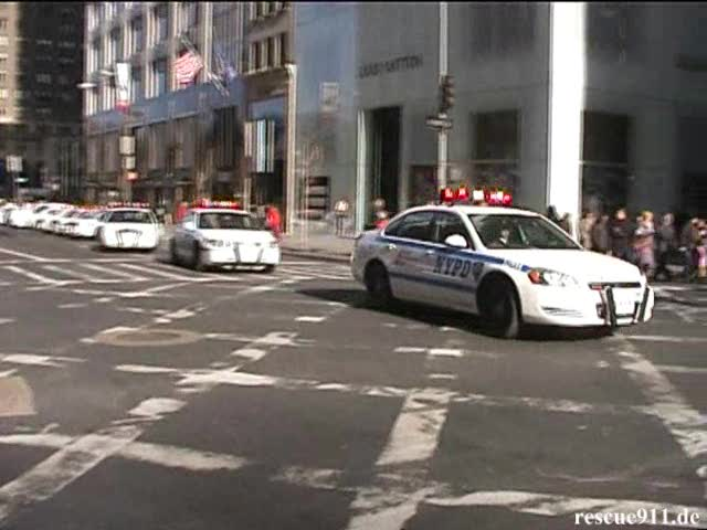 Surge Drill (70 Police Cars) NYPD (stream)